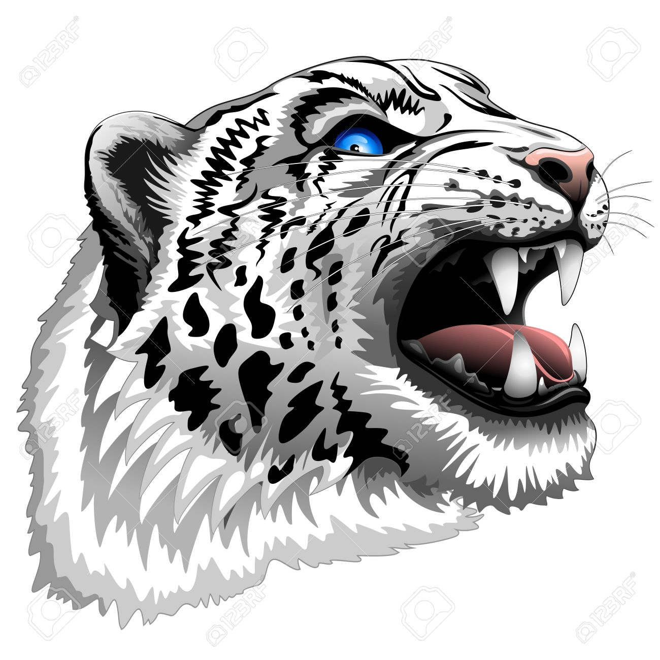 The Snow Leopards clipart #5, Download drawings