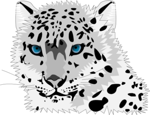 The Snow Leopards clipart #11, Download drawings
