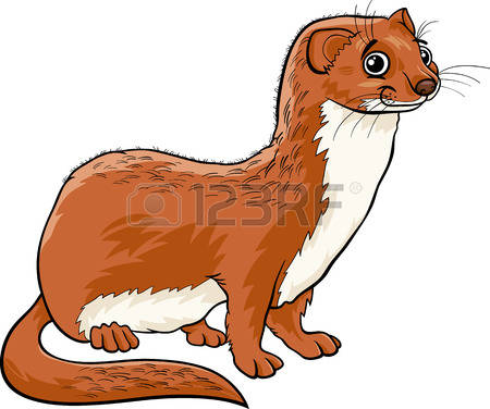 The Stoat clipart #8, Download drawings