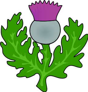 Thistle clipart #10, Download drawings