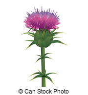 Thistle clipart #20, Download drawings