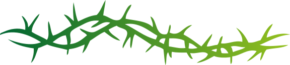 Thorns clipart #13, Download drawings