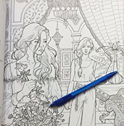A Court Of Thorns And Roses Colouring Book 9 New T