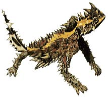 Thorny Devil clipart #14, Download drawings
