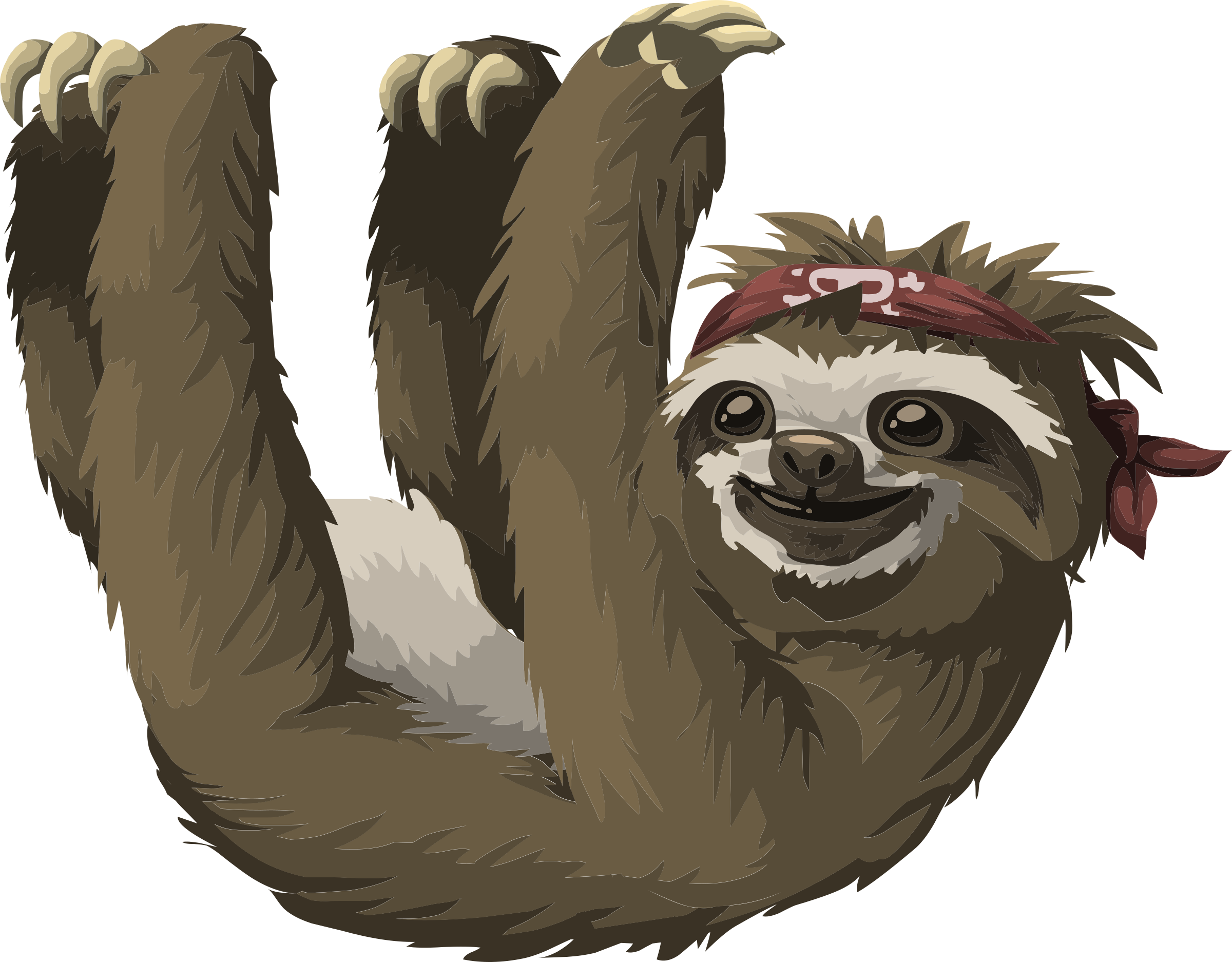 Three Toed Sloth clipart #1, Download drawings