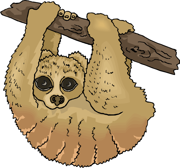 Three Toed Sloth clipart #2, Download drawings