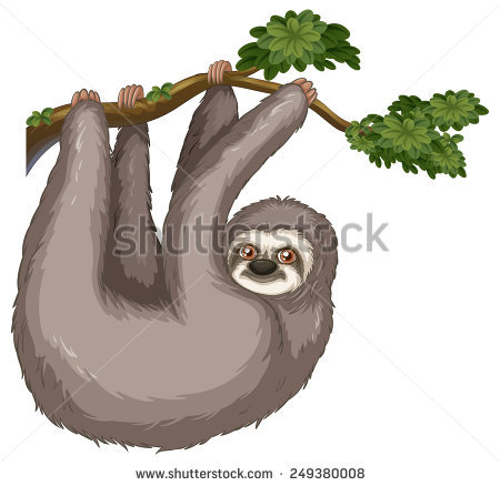 Three Toed Sloth svg #12, Download drawings