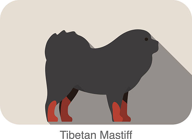 Tibetan Mastiff clipart #18, Download drawings
