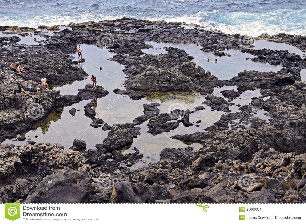 Tide Pool clipart #18, Download drawings
