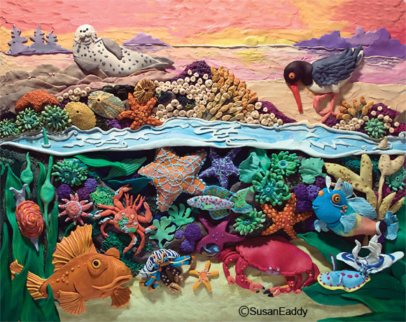 Tide Pool clipart #3, Download drawings