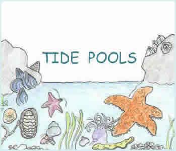 Tide Pool coloring #13, Download drawings