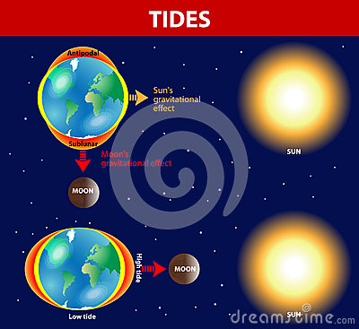 Tides clipart #15, Download drawings