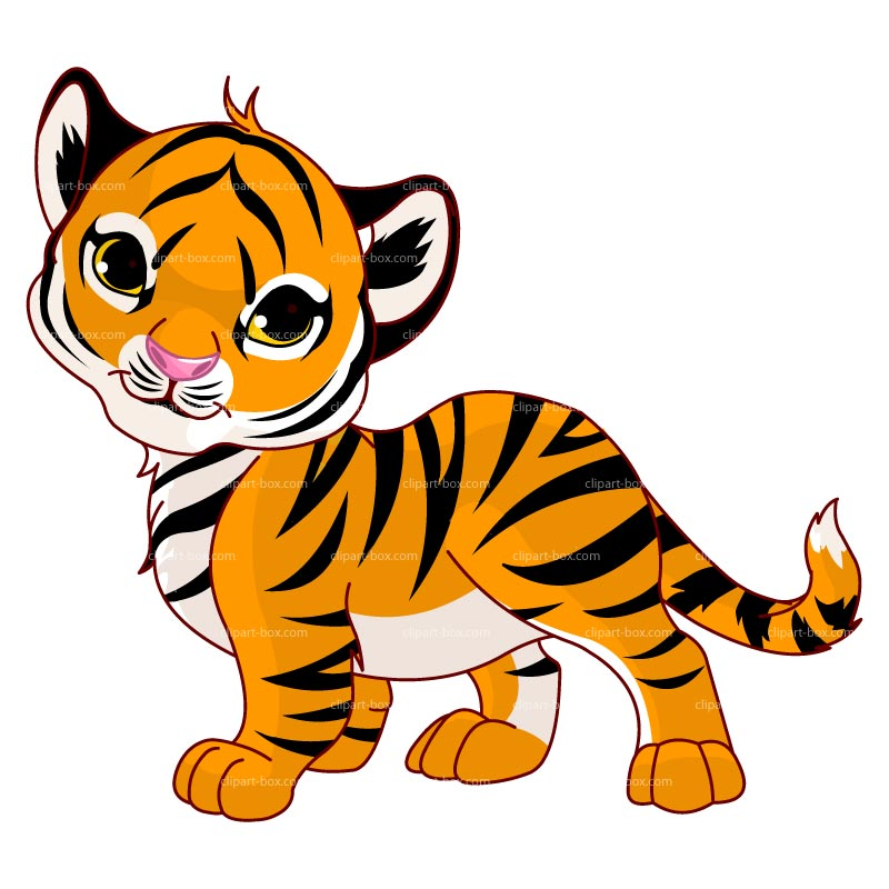 Tigres clipart #7, Download drawings