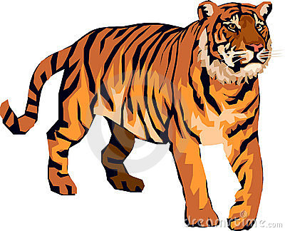 Tiger clipart #2, Download drawings