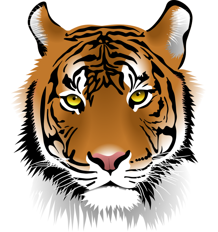 Tiiger clipart #10, Download drawings