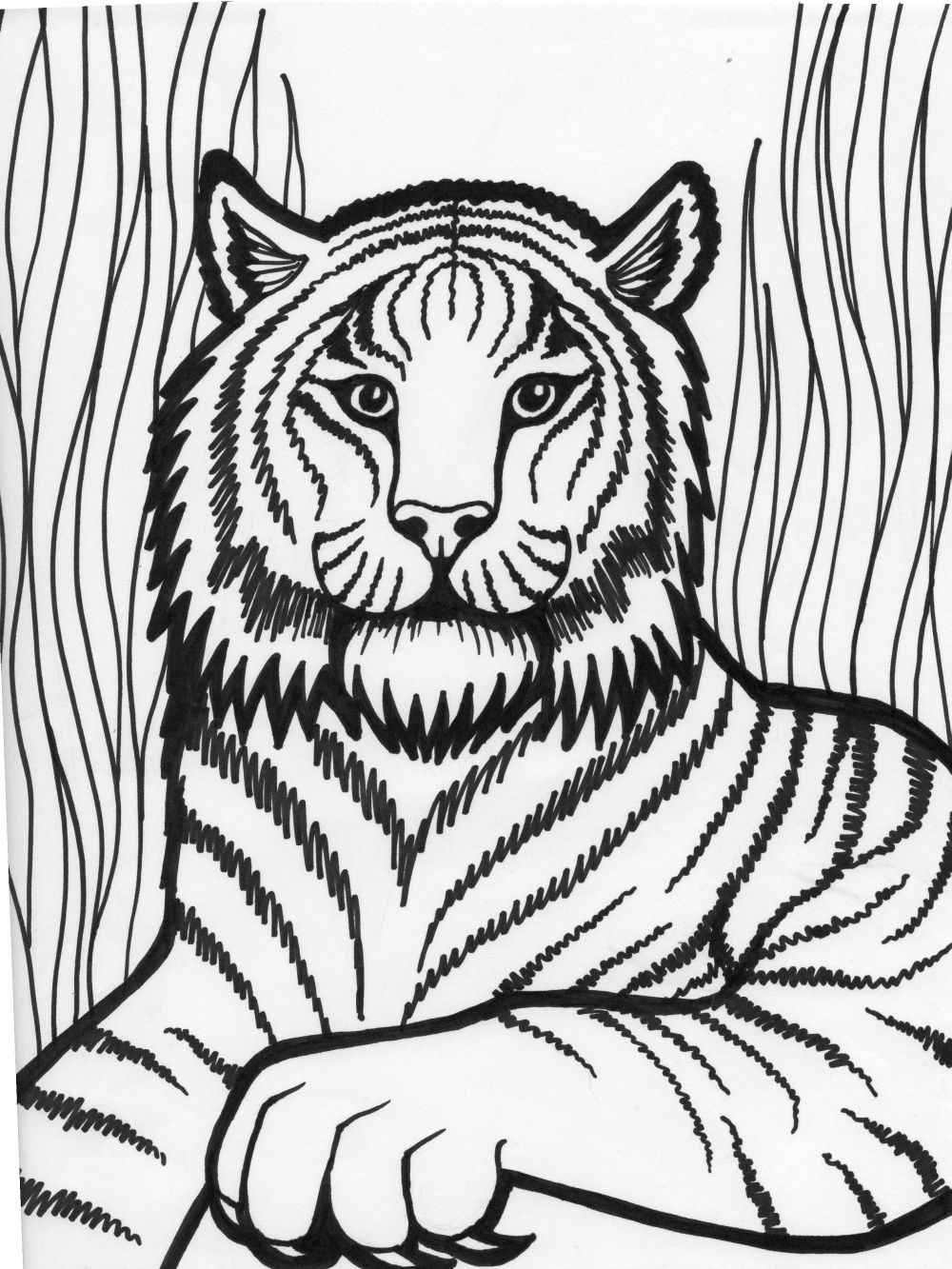 Tiiger coloring #2, Download drawings
