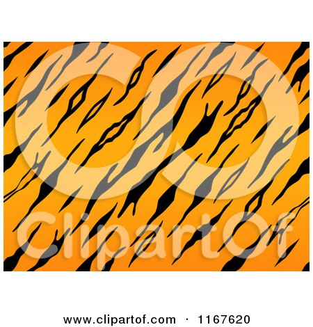 Tiger Print clipart #16, Download drawings