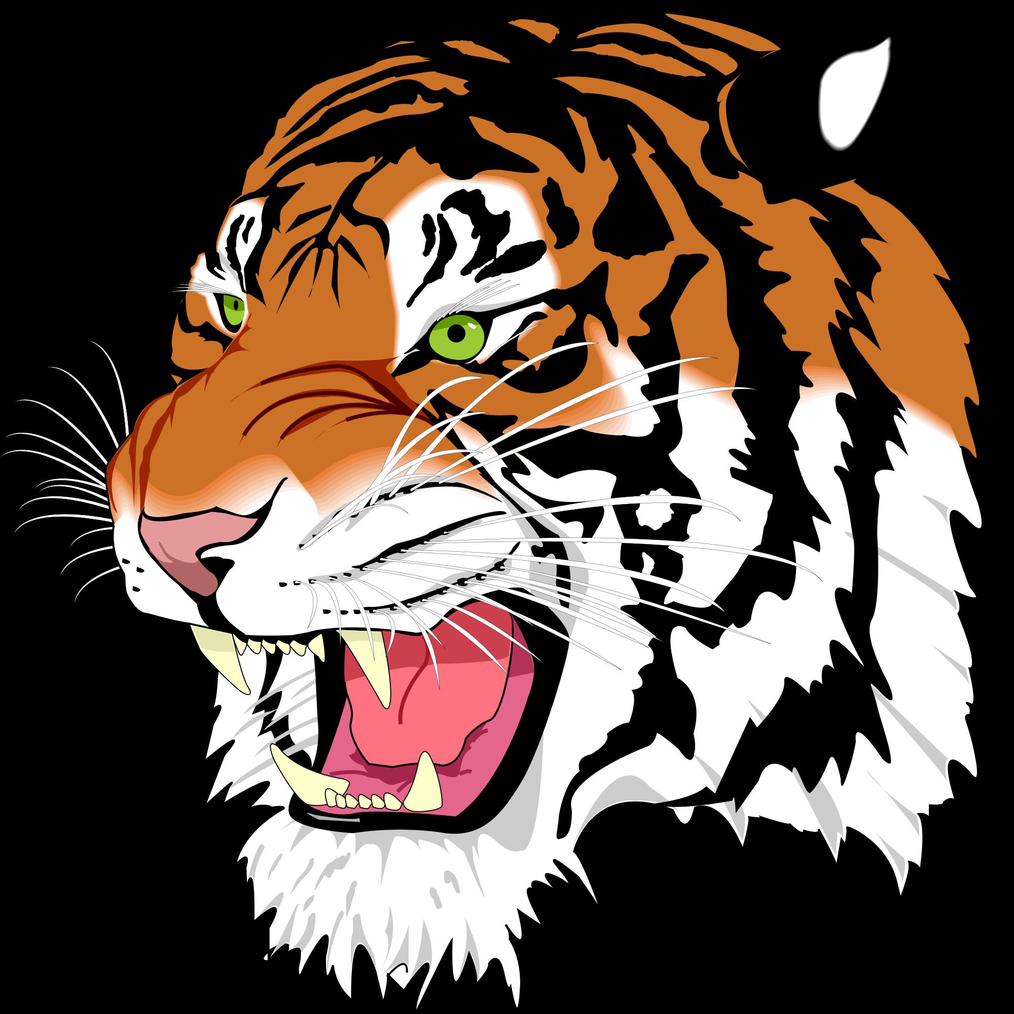 Tiger svg #19, Download drawings