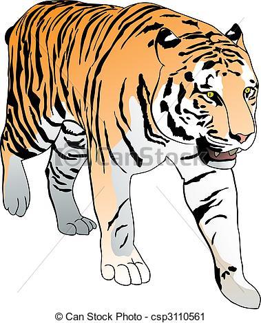 Tigre Bengala clipart #2, Download drawings