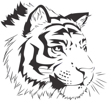 Tigre Bengala clipart #9, Download drawings