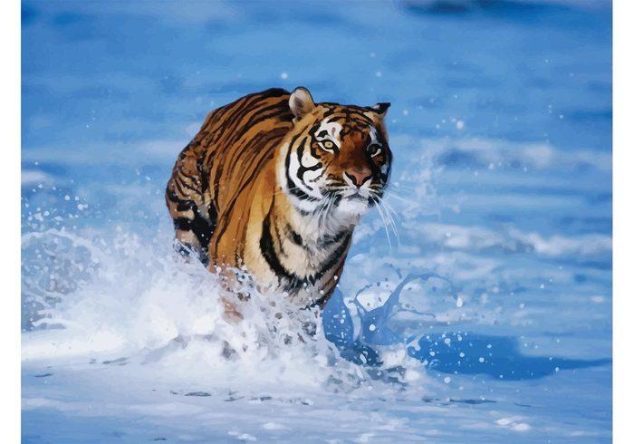 Tigre Bengala svg #18, Download drawings