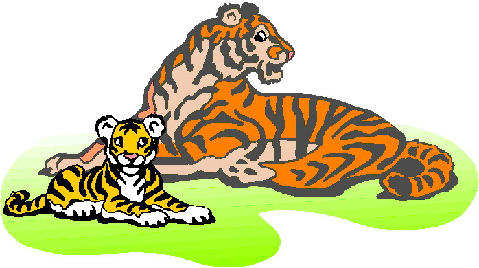 Tigres clipart #13, Download drawings