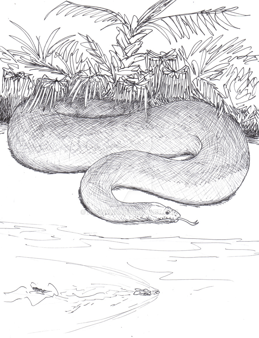Titanoboa coloring #7, Download drawings