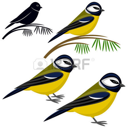 Titmouse clipart #5, Download drawings