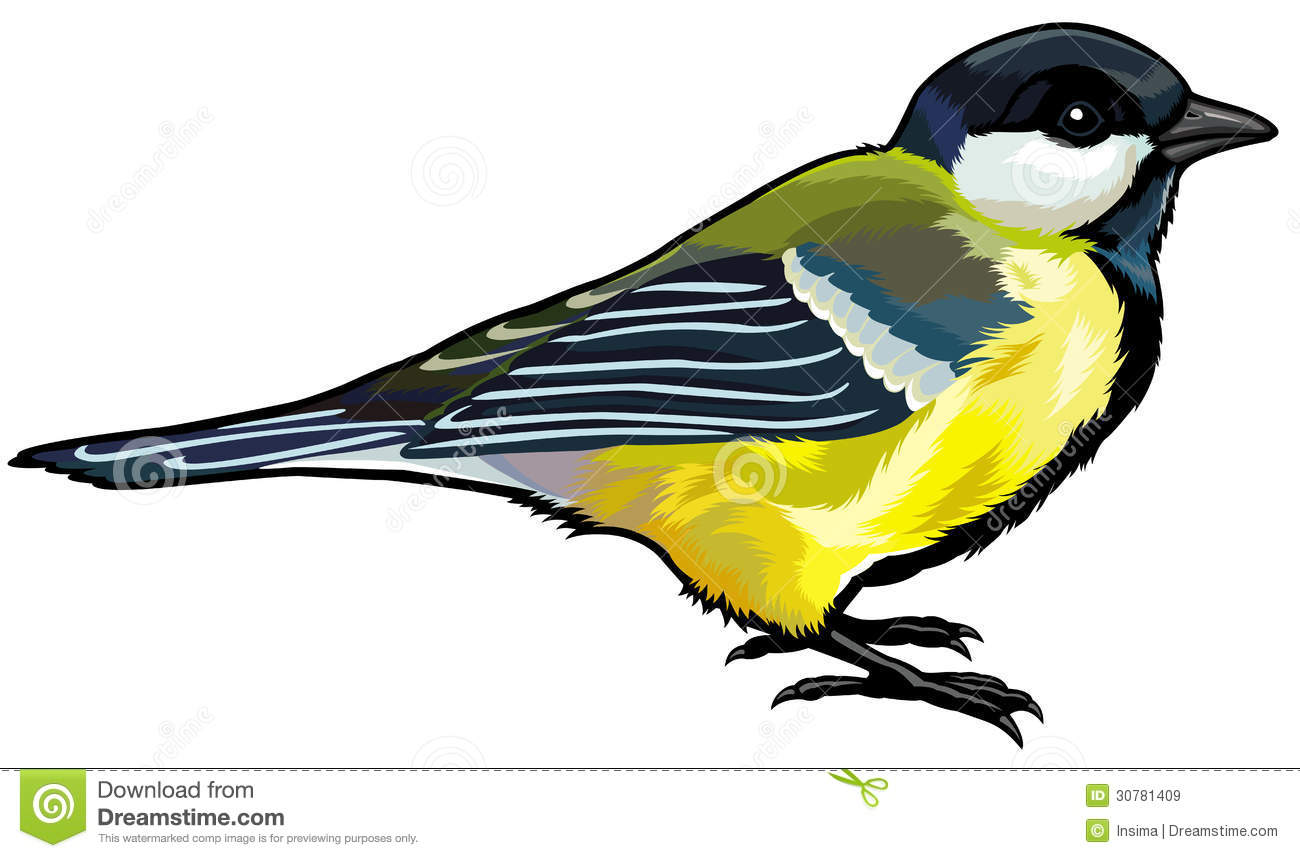 Titmouse clipart #19, Download drawings
