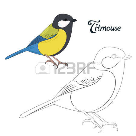 Titmouse coloring #16, Download drawings