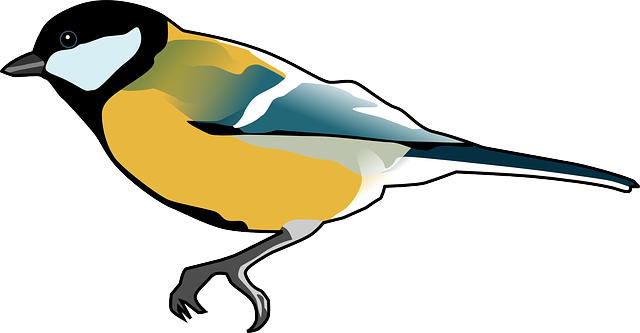 Titmouse svg #12, Download drawings