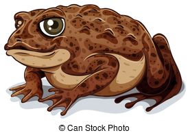 Toad clipart #10, Download drawings