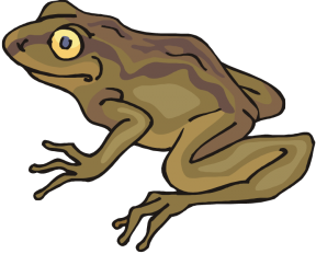 Toad clipart #6, Download drawings