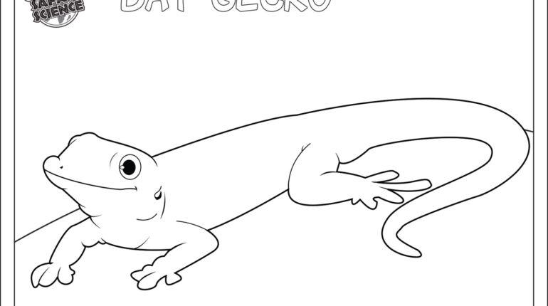 Tokay Gecko coloring #19, Download drawings