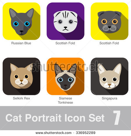 Tonkinese clipart #7, Download drawings