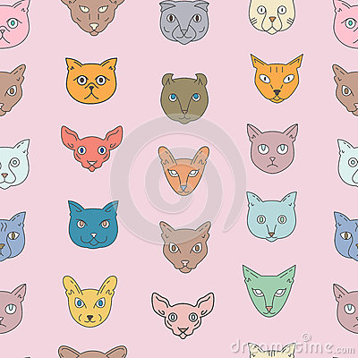 Tonkinese clipart #2, Download drawings