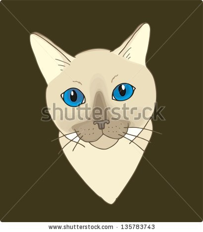Tonkinese clipart #14, Download drawings