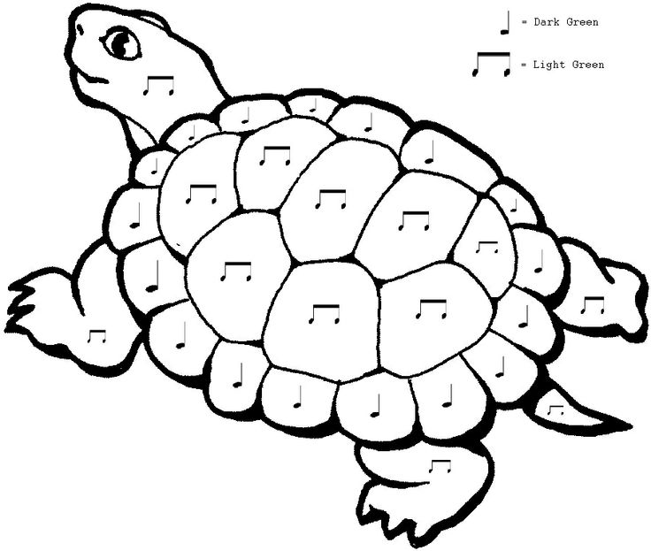 Tortoise coloring #20, Download drawings