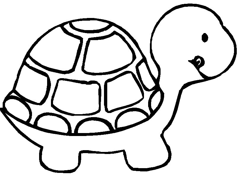 Tortoise coloring #14, Download drawings