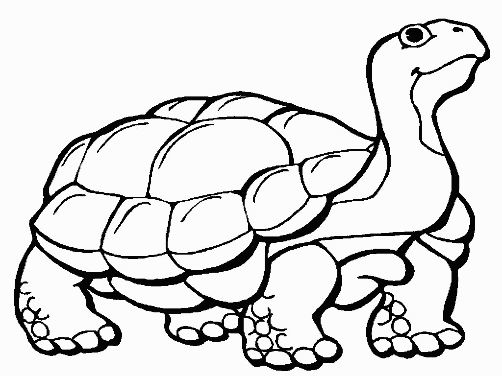Tortoise coloring #19, Download drawings