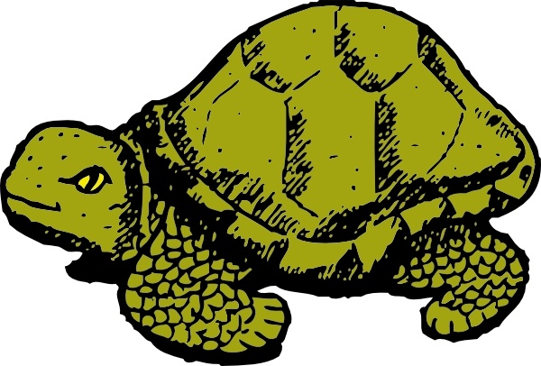 Tortoise svg #13, Download drawings