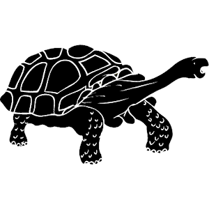 Tortoise svg #20, Download drawings