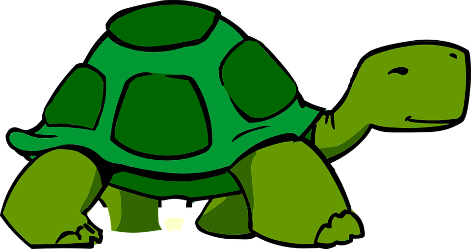 Tortoise svg #7, Download drawings