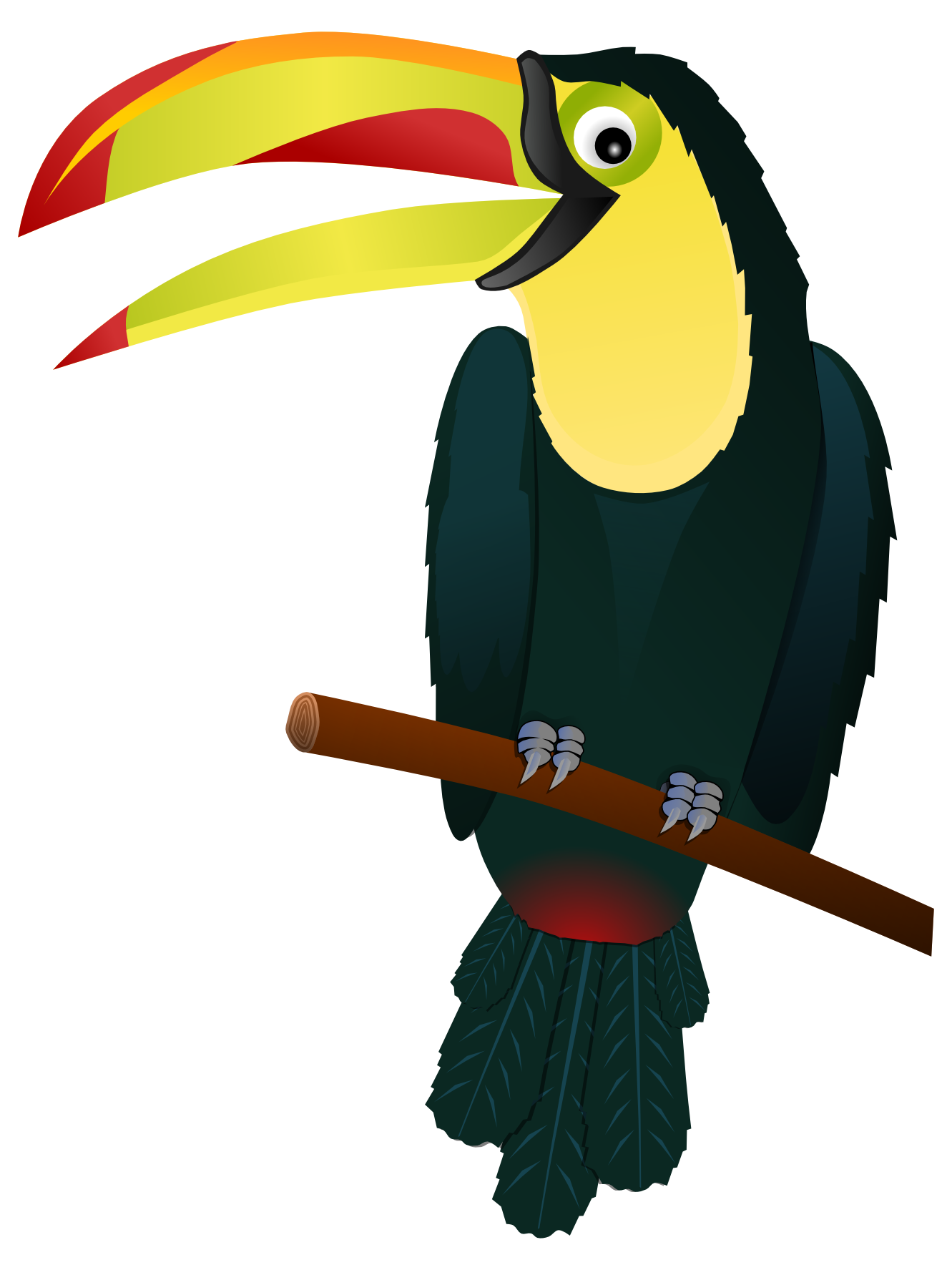 Toucan clipart #9, Download drawings
