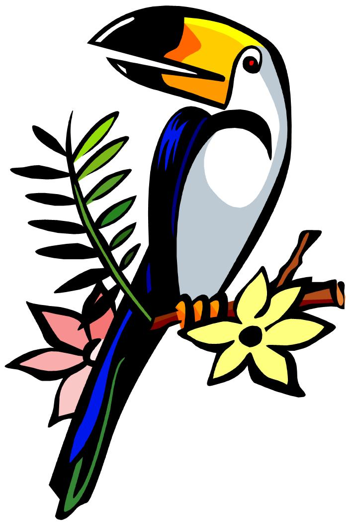 Toucan clipart #5, Download drawings