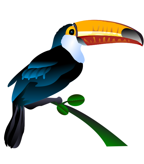 Toucan clipart #17, Download drawings