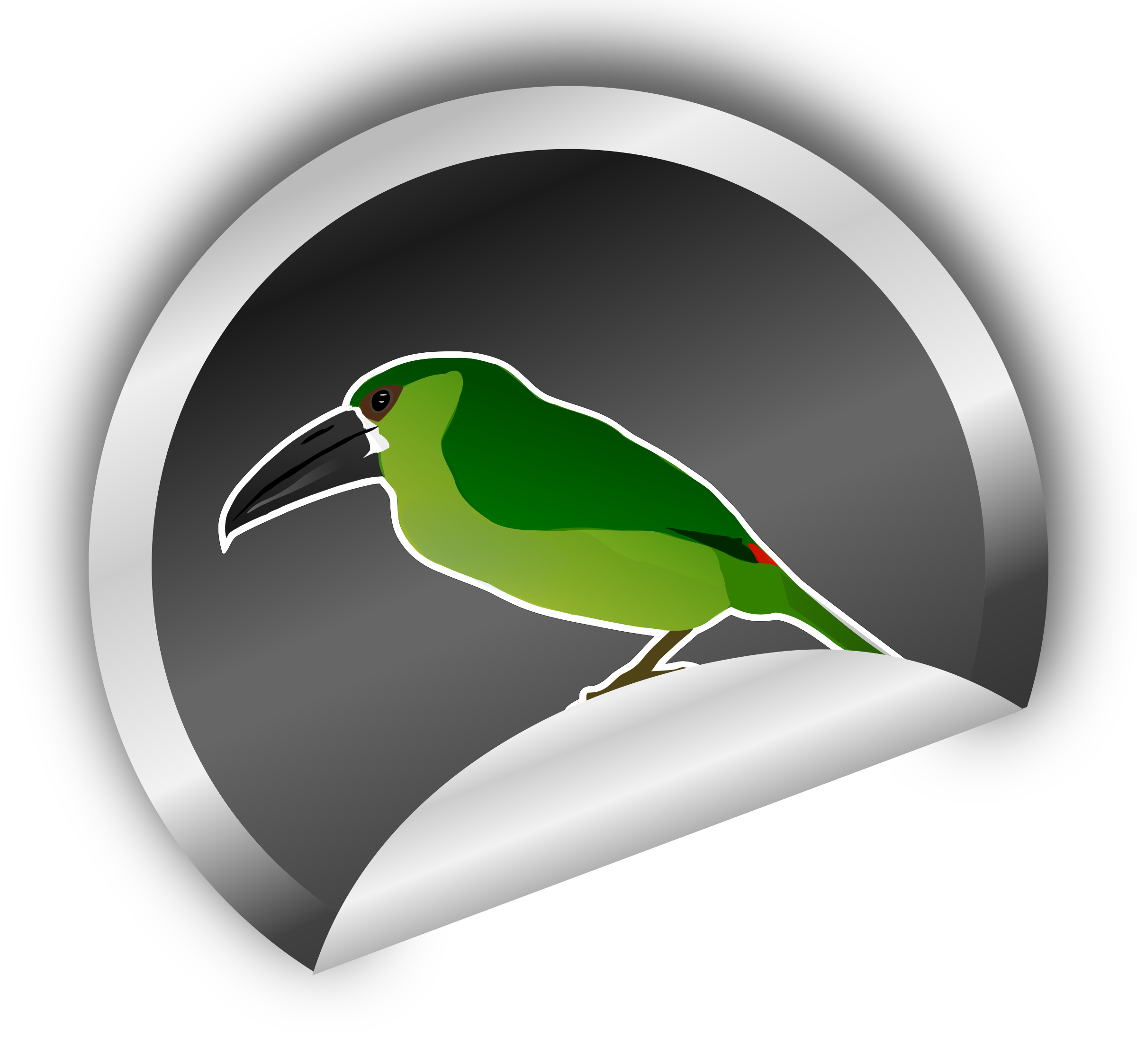 Toucanet clipart #3, Download drawings