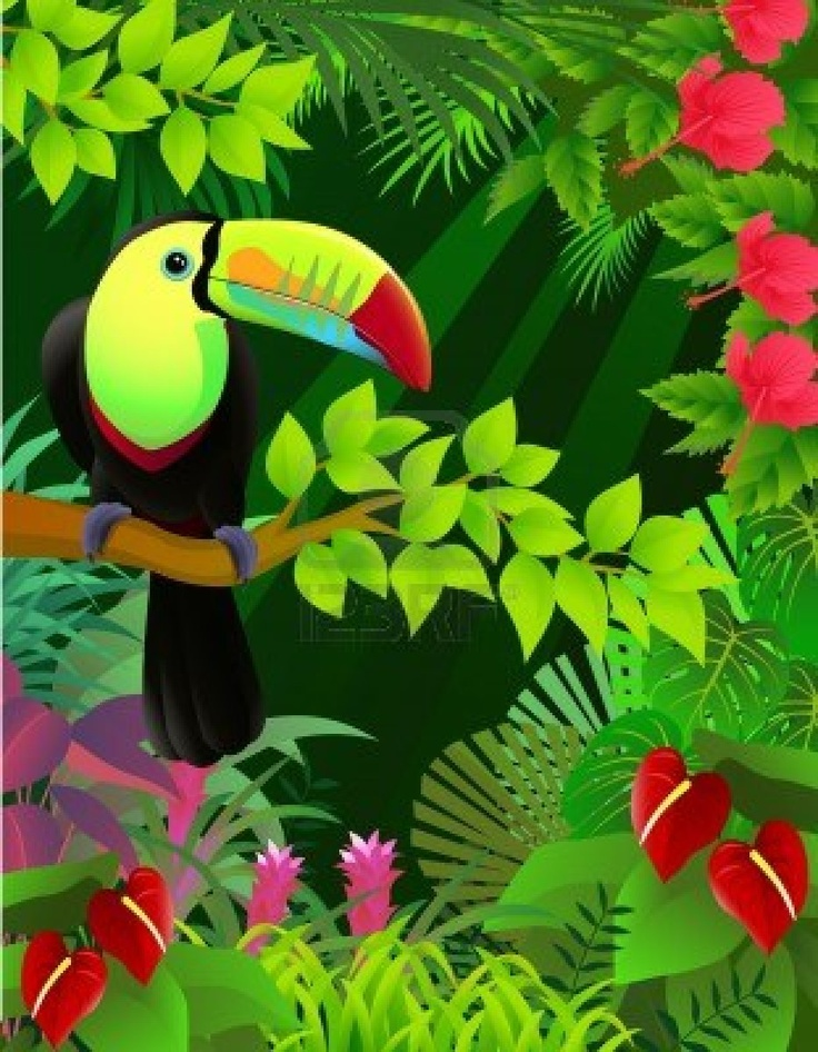 Toucanet clipart #2, Download drawings