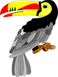 Toucanet clipart #9, Download drawings