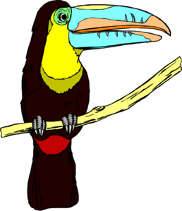 Toucanet clipart #14, Download drawings